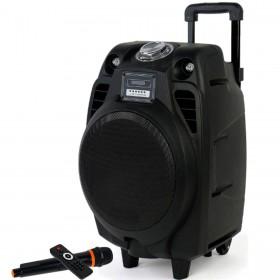 Boxa Audio Temeisheng Tip Troller Port USB Suport microSD Alimentare 220V Intrare RCA Inregistrare pe Stick